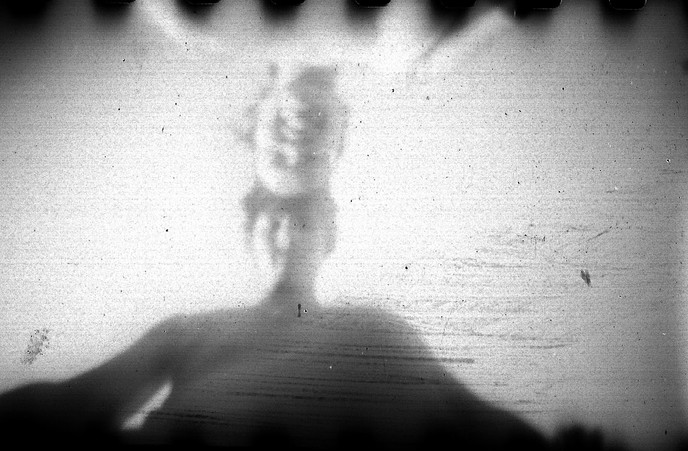 © Fotocrias pinhole day 2013