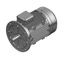 Electric Motor 1000 RPM