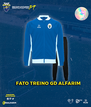 FATO TREINO GD ALFARIM.png