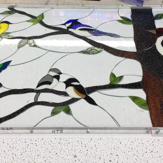 Custom Bird Working Photo 3
