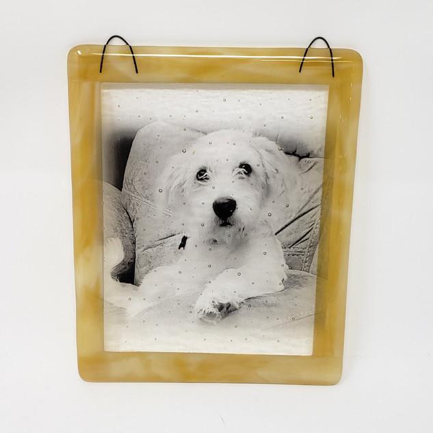 Custom Personalized Pup Sun Catcher Glassography