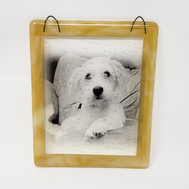 Custom Personalized Pup Sun Catcher Glassography
