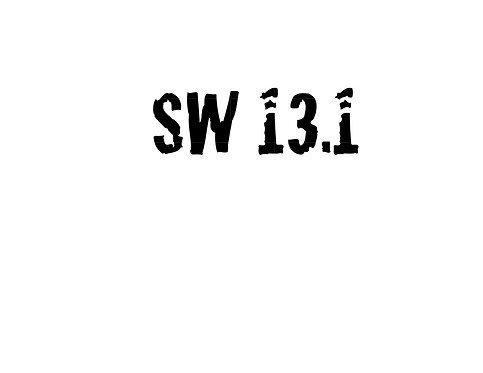 Stroller Warriors® SW 13.1 Decal