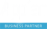 Appian Partner Desarrollo