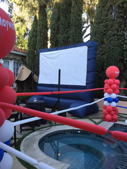 """Fight Night"" Screen set-up"