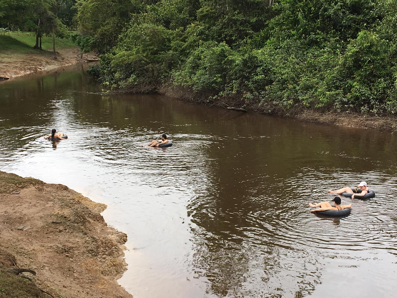 Amazon River 8