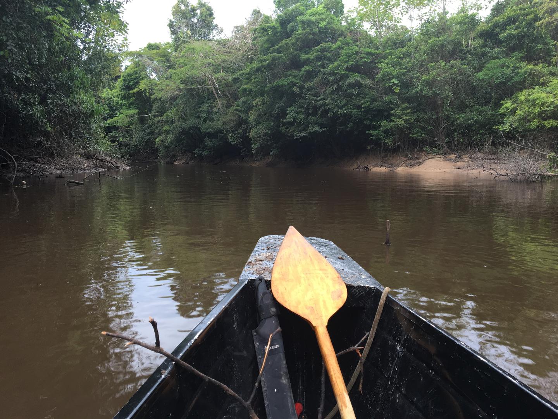 Amazon River 7