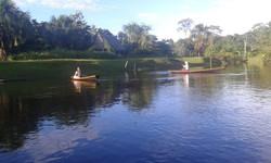 Amazon River 5