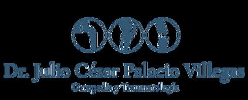 Logo-Dr-Palacio.png