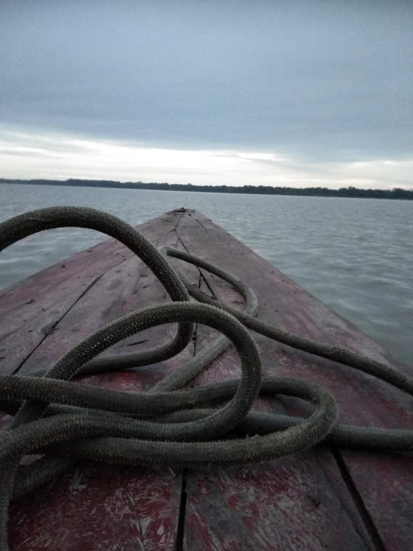Amazon River 4