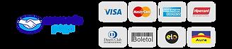 logotipo bandeiras recebimento cartão