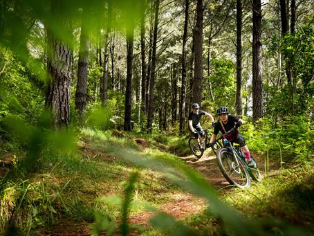 STORY: Waitangi Mountain Bike Park