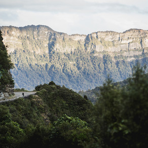 Story: Te Urewera - A Land of its Own Pt. 1