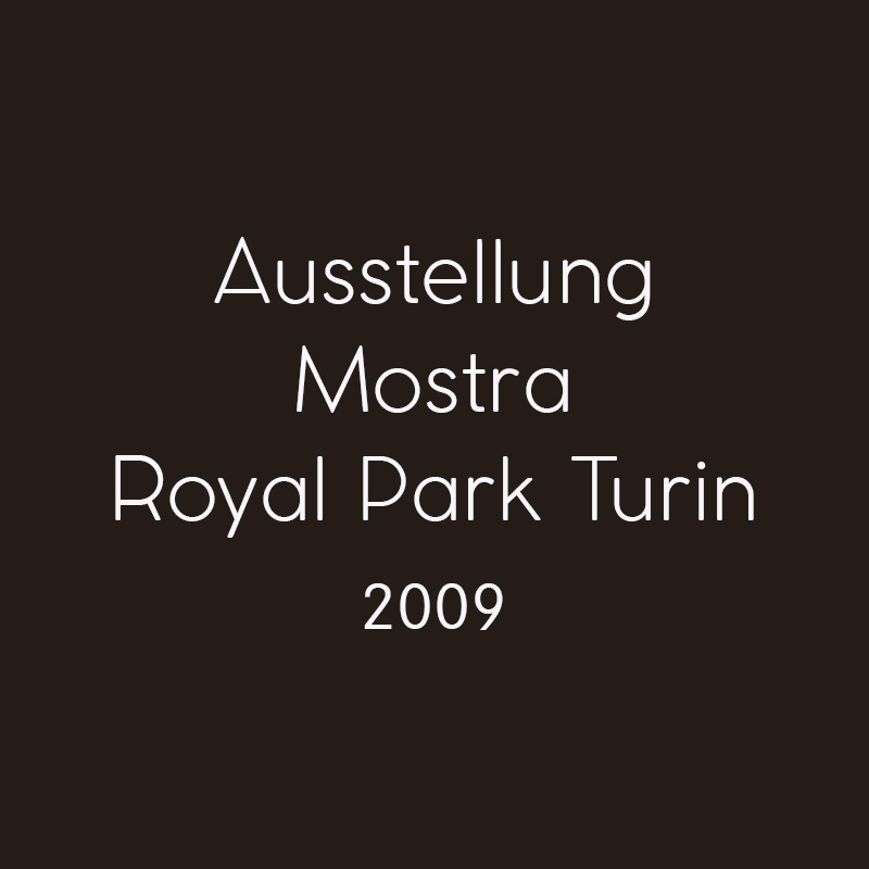 2009 Royal Park Turin
