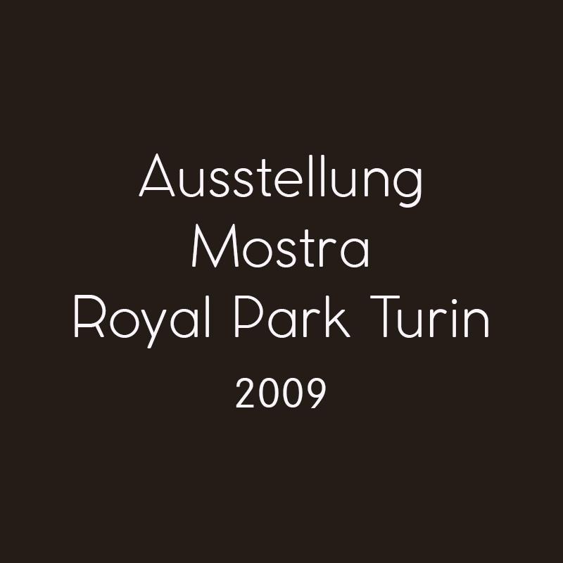 2009 Royal Park Turin