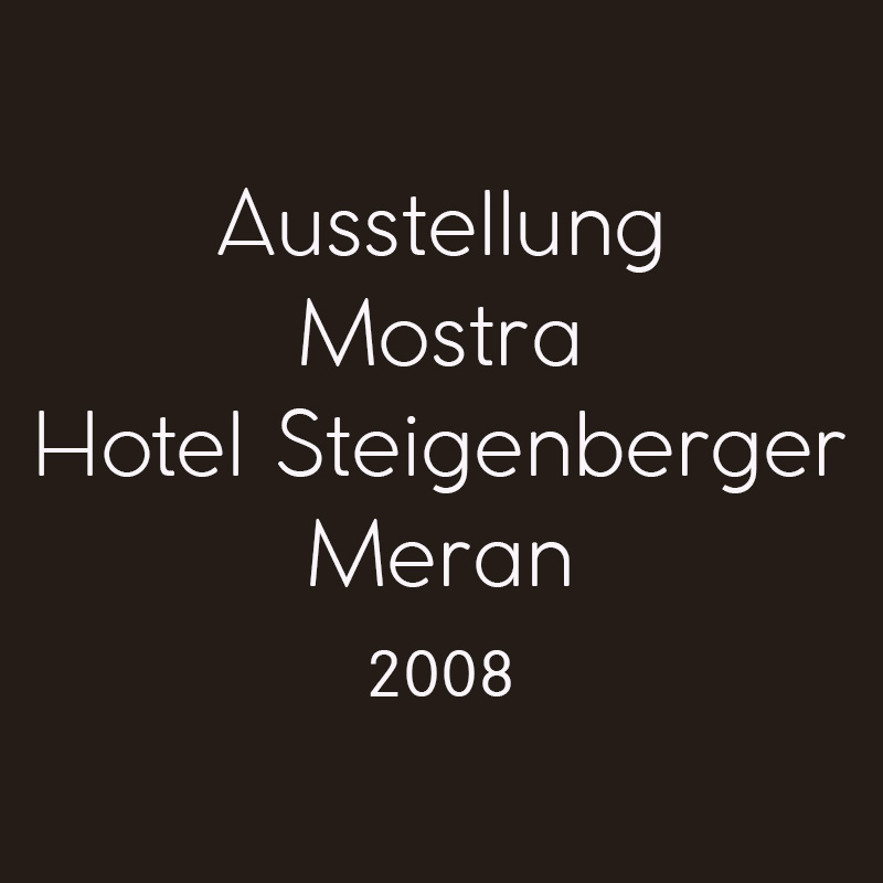 2008 Hotel Steigenberger