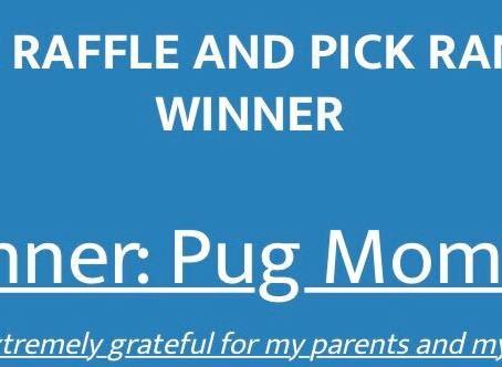 Cricut Joy Winners Announced!