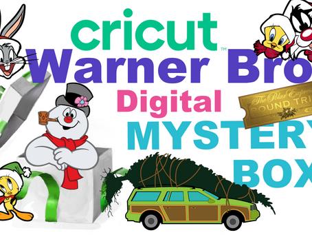 Warner Bros. Digital Mystery Box!