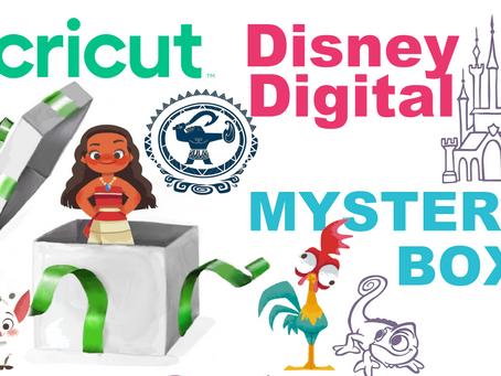 Disney Digital Mystery Box Released!