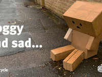 soggy cardboard goes to landfill