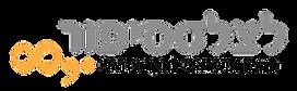 לוגו המכון לחקר ויזואלי.png