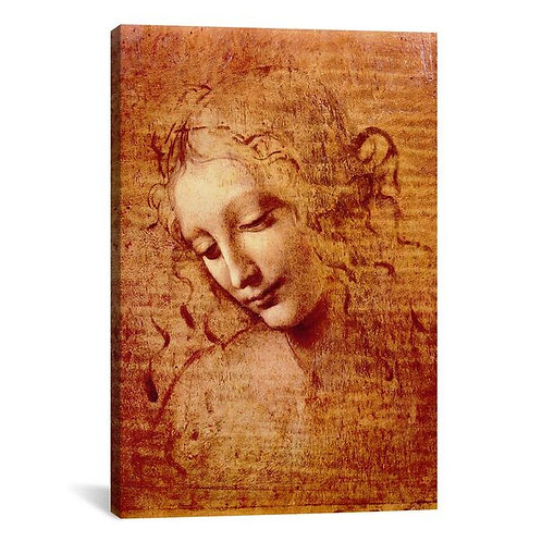 Female Head by Leonardo da Vinci Canvas Print