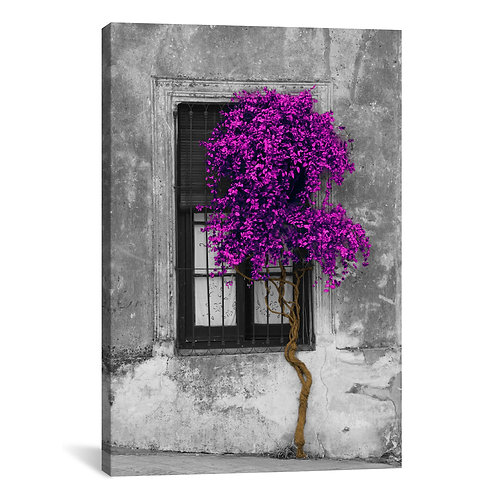 Tree in Front of Window Purple Pop Color Pop