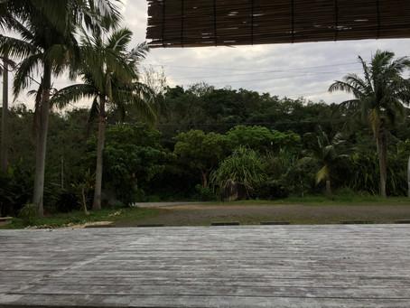 南の島からおはようございます。