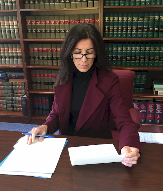 Attorney reading through estate planning case