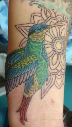 phil tattoo 2018 17