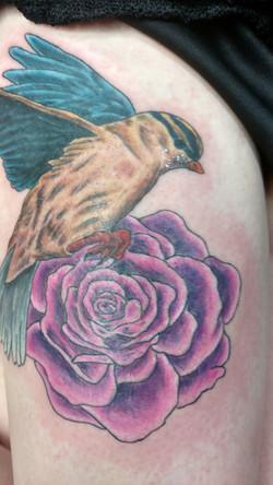phil tattoo 2018 2