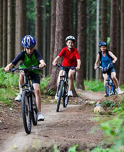 new-forest-cycle-routes.jpg