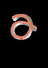 a-logo-ORANGE-2021.png