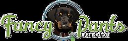 fancypants_logo_color_website.png