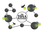 Tosa-Network-FINAL.png