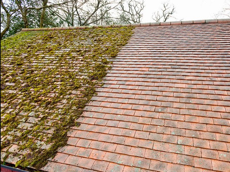"A common question- ""Why is it only recently roof cleaning has become popular?"""