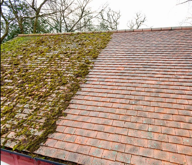 Moss removal & biocide treatment