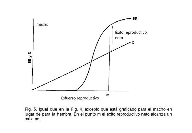 Trivers Figura 5.jpg