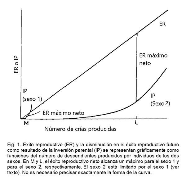Trivers Figura 1.jpg