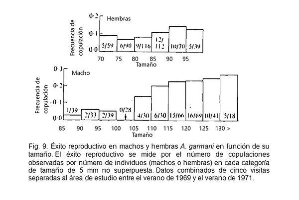 Trivers Figura 9.jpg