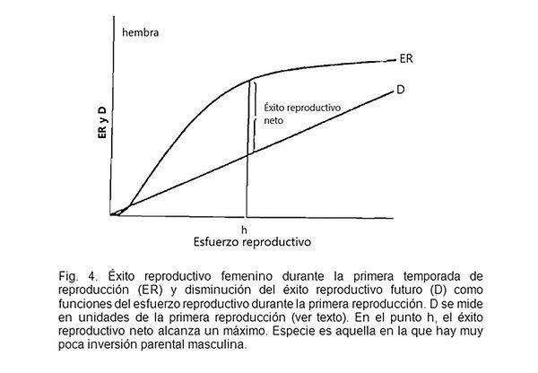 Trivers Figura 4.jpg