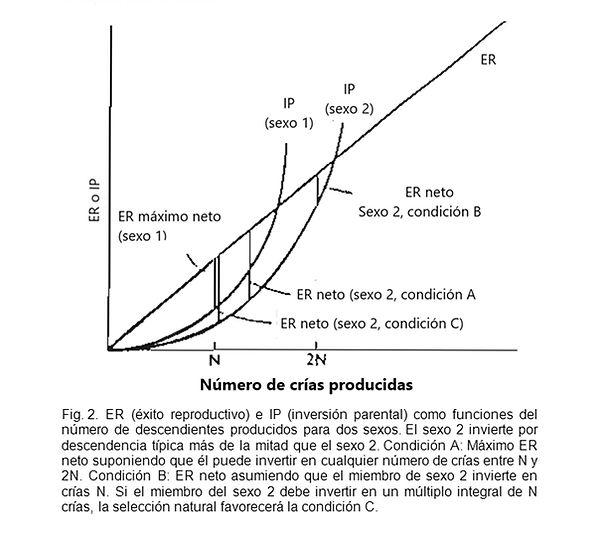 Trivers Figura 2.jpg