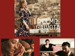 Olmo e a Gaivota (2014)