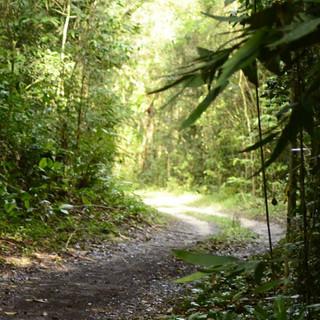 Foto: Acervo Reserva Volta Velha