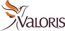 Logo valoris simple.jpg