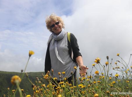| 08-07-2019 | Yellow Flower Blooming on the Circle Caldeira Hiking