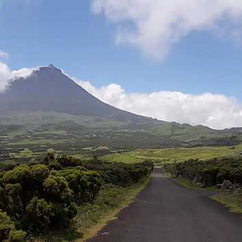 Pico Azores Naturalist.pt Best Images To