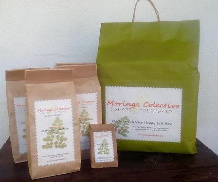 Moringa Collective share pack