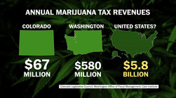 Washington Recreational Marijuana is generating huge tax revenue
