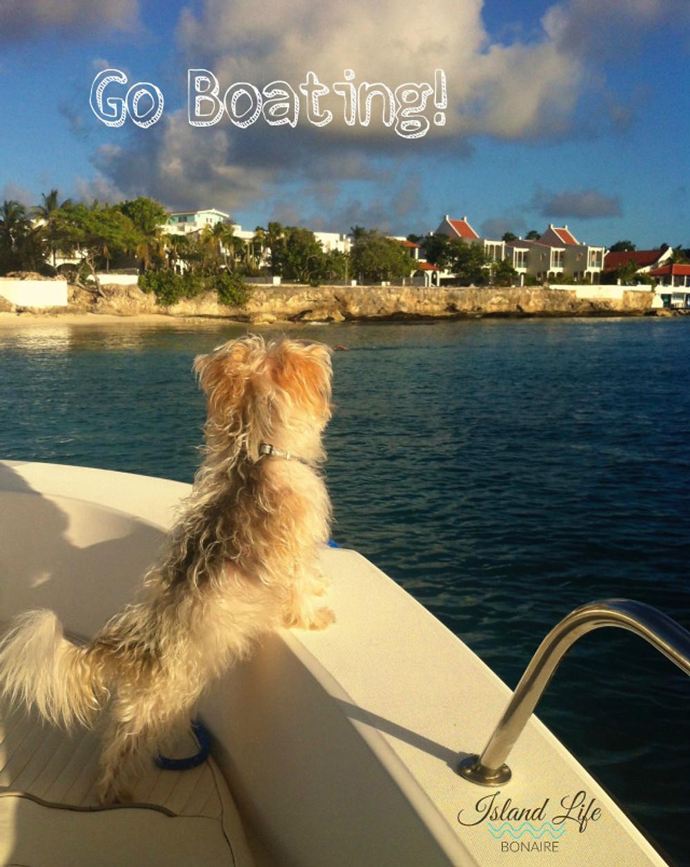 Go Boating!